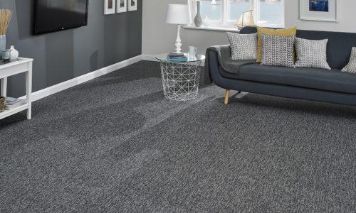 plain ounge carpet leicester